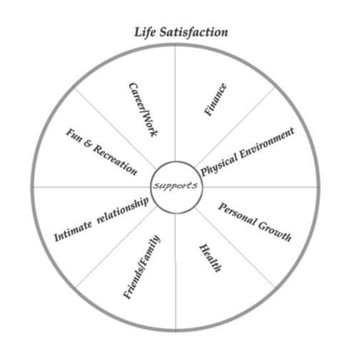 life-satisfaction-pie-493x499